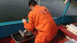 Monitoramento de Erosão e Assoreamento no Estuário de Santos